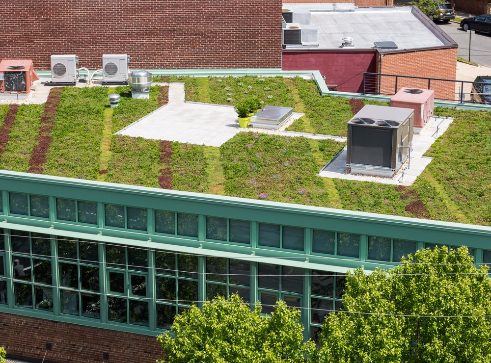 top-5-green-roof-benefits